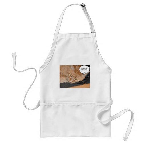Orange Tabby Cat Humor Aprons