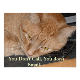 Orange Tabby Cat Humor Poster