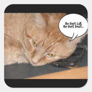 Orange Tabby Cat Humor Square Sticker