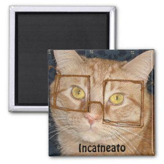 Orange Tabby Cat/Incognito Humor Square Magnet
