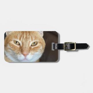 Orange tabby cat luggage tag