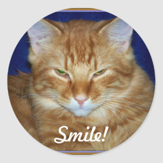 Orange Tabby Cat Smile Sticker