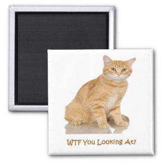 Orange Tabby Cat Square Magnet