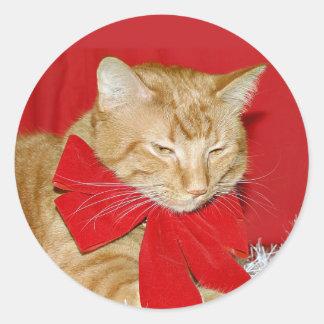 Orange tabby Christmas bow sticker