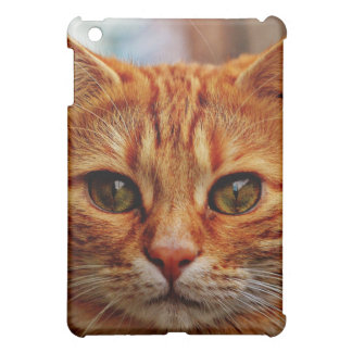 Orange Tabby Kitten Cat Face, iPad Mini Hard Case Cover For The iPad Mini