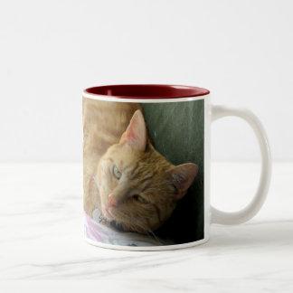 Orange Tabby mug with verse