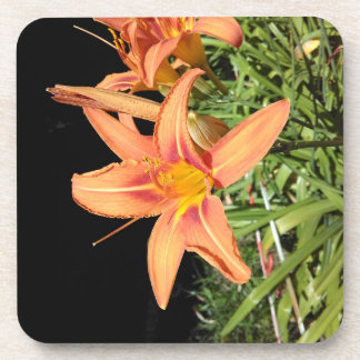 Orange Tiger Lilies Drink Coasters