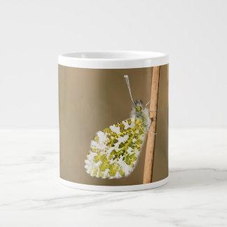 Orange-tip Butterfly Large Coffee Mug