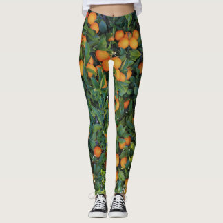 Orange tree funky leggings with oranges and leaves
