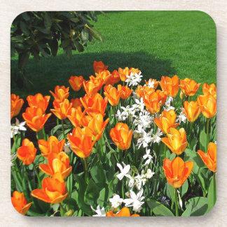 Orange Tulip On Multiple Products Drink Coasters