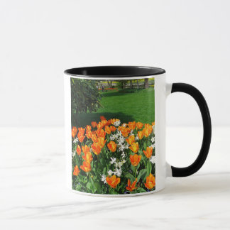 Orange Tulip On Multiple Products Mug