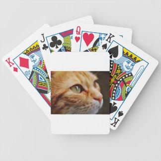Orange White Cat Bicycle Playing Cards