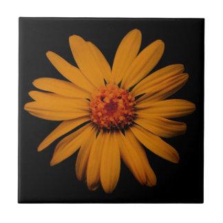 Orange Wildflower Ceramic Tile