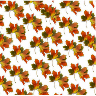 Orange & Yellow  Fall Leaves Photo Cut Outs