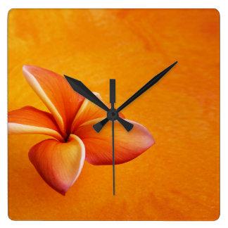 Orange Yellow Plumeria Flower Orange Background Clocks