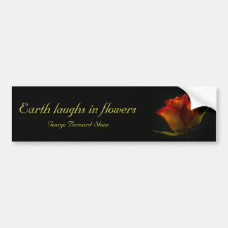 Orange & Yellow Rose Bumper Sticker with quote