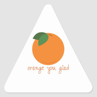 Orange You Glad Triangle Sticker