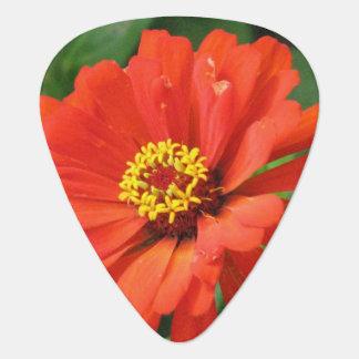 Orange Zinnia Guitar Pick