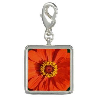 Orange Zinnia Photo Charms
