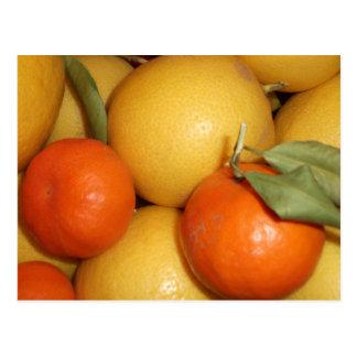 Oranges and Lemons Postcard