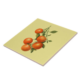 Oranges ~ Botanical Tile ~ Kitchen ~ Any Color ~