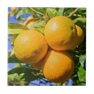 Oranges on a tree tile