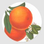 Oranges Vintage Crate Art Template Round Stickers