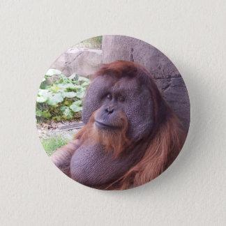 Orangutan 2 Inch Round Button
