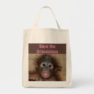 Orangutan Animal Babies