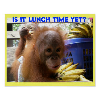 Orangutan Babies Lunch Poster