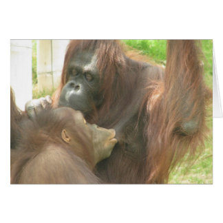 Orangutan Breastfeeding Card
