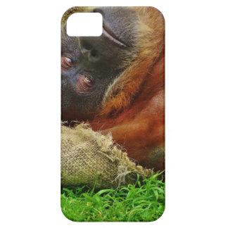 Orangutan Case For The iPhone 5