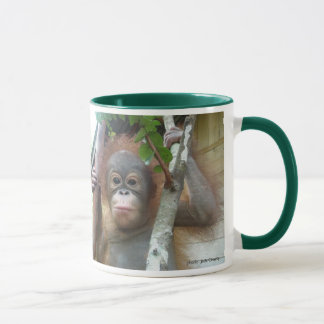 Orangutan Foundation International rescued orphan Mug