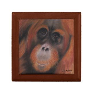 Orangutan gift box