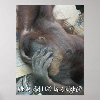 Orangutan Hangover Poster