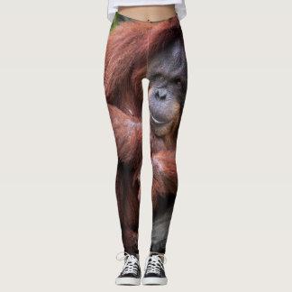 orangutan Monkey leggings