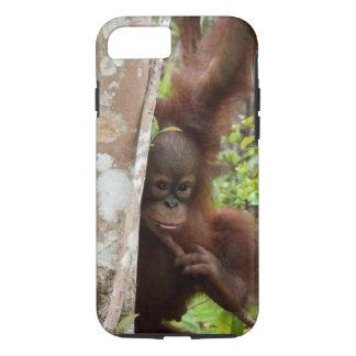 Orangutan Orphan Jeffrey Junior in Jungle School Case-Mate iPhone Case