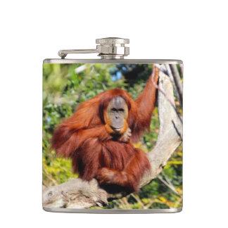 Orangutan photo hip flask