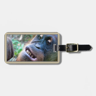Orangutan Photo Luggage Tags #4