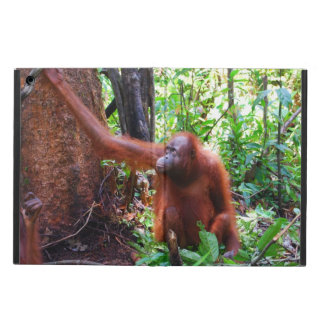 Orangutan Red Ape in Borneo Rainforest iPad Air Cover