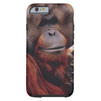 Orangutan Tough iPhone 6 Case