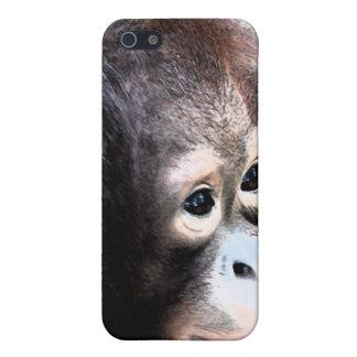 Orangutan Wildlife Conservation iPhone 5 Case