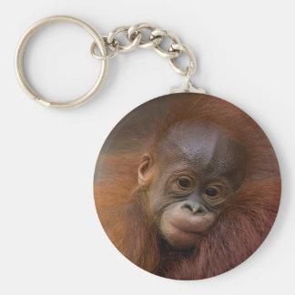 Orangutang baby basic round button keychain