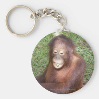 Orangutans Rescue Keychain
