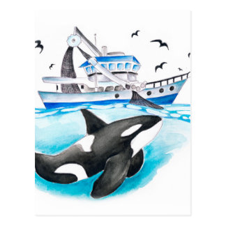 Orca And The Boat Postcard