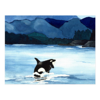 Orca Breach Postcard