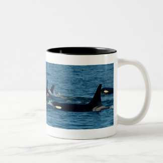 Orca Family Two-Tone Coffee Mug