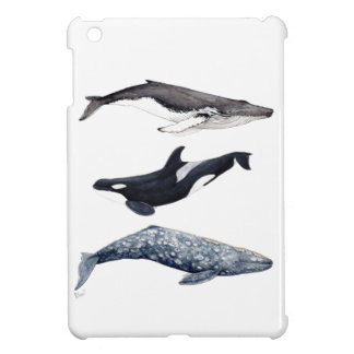 Orca, hunchbacked whale and gray whale iPad mini cover