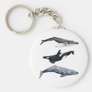 Orca, hunchbacked whale and gray whale keychain