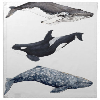 Orca, hunchbacked whale and gray whale napkin